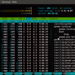 htop Screenshot (Ubuntu 10.4 beta2)